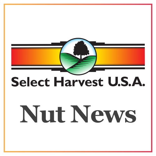 Nut News: Reviewing Current Market Conditions and November's Position Report
